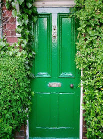 Green front door surrounded by green Ivy and plants