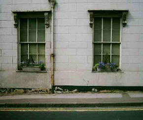 Run down house frontage with blue flowers in window boxes