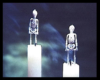Two extinguished candles with small skeletons